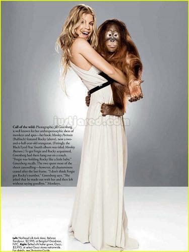 fergie-orangutan-04.jpg